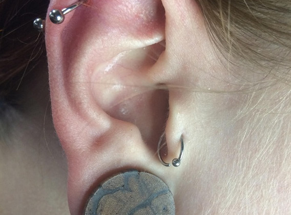 Cartilage.jpg