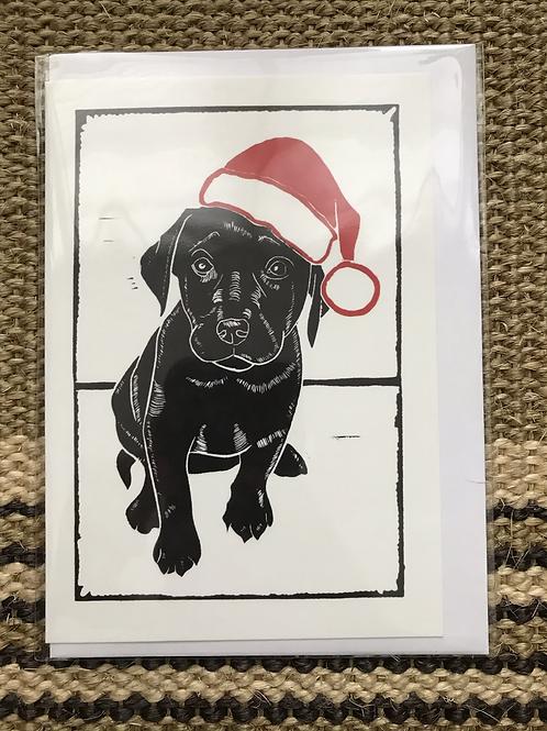 'Xmas Pup' Greetings Card