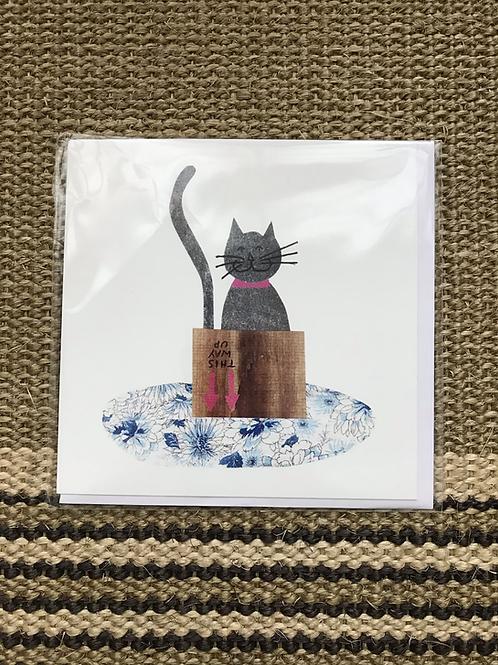 'Cat in a Box' Greetings Card