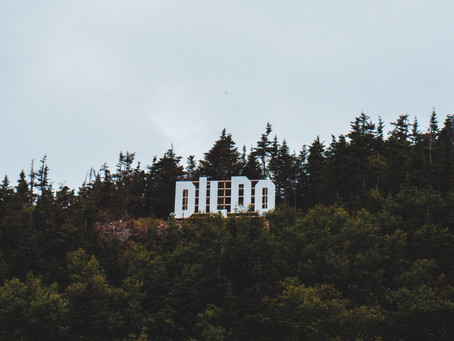 What Is a Dildo? A Guide to Everything You Wanted To Know About Dildos
