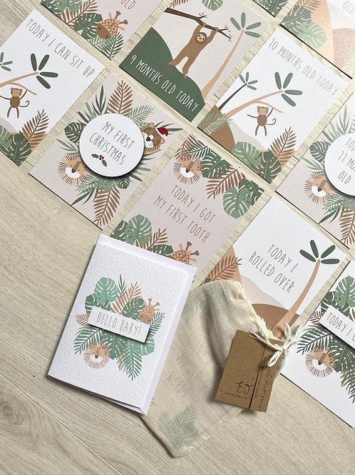 Milestone card set of 24- Jungle