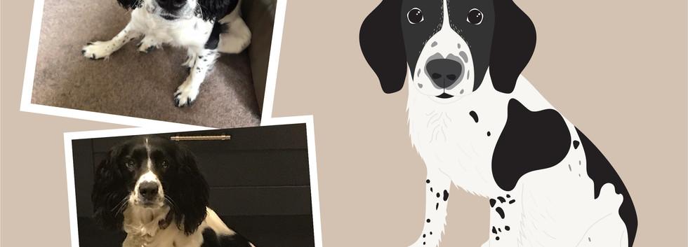 Pet portrait wix layout-05.jpg