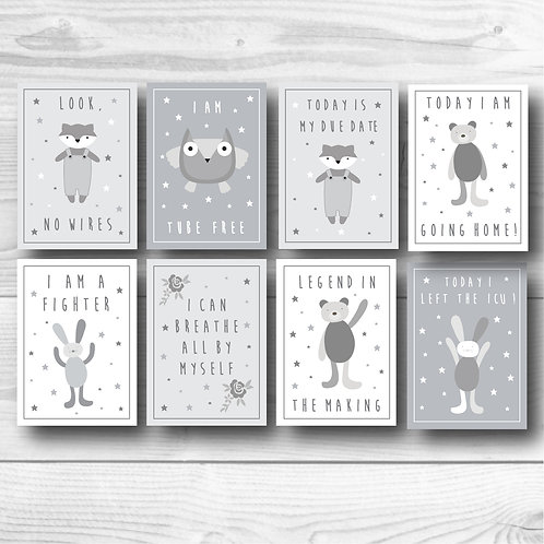 Fighter baby Milestone card set of 8- Grey & white