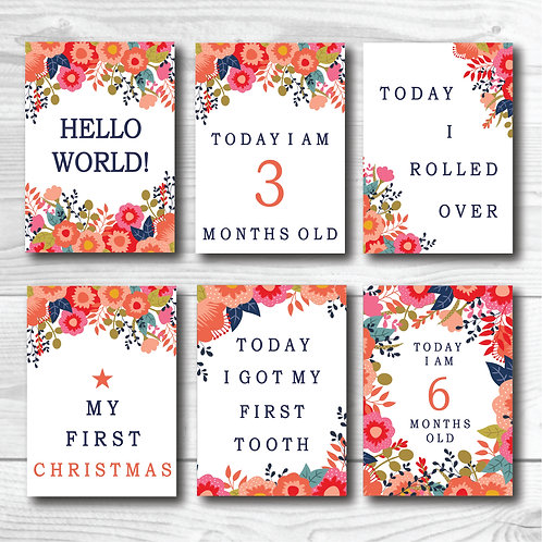 Baby Milestone card set of 24- Bright Florals