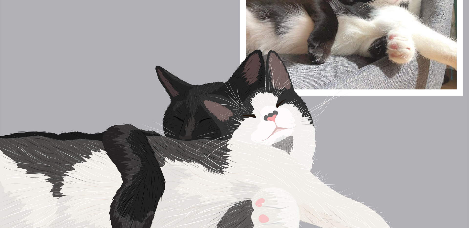 Pet portrait wix layout-01.jpg