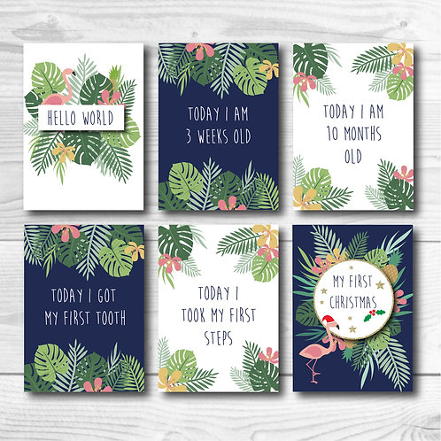 Baby Milestone card set of 24- Tropical
