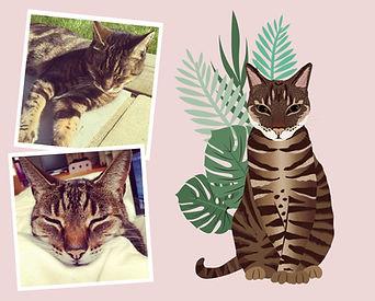 Pet portrait wix layout-01.jpg