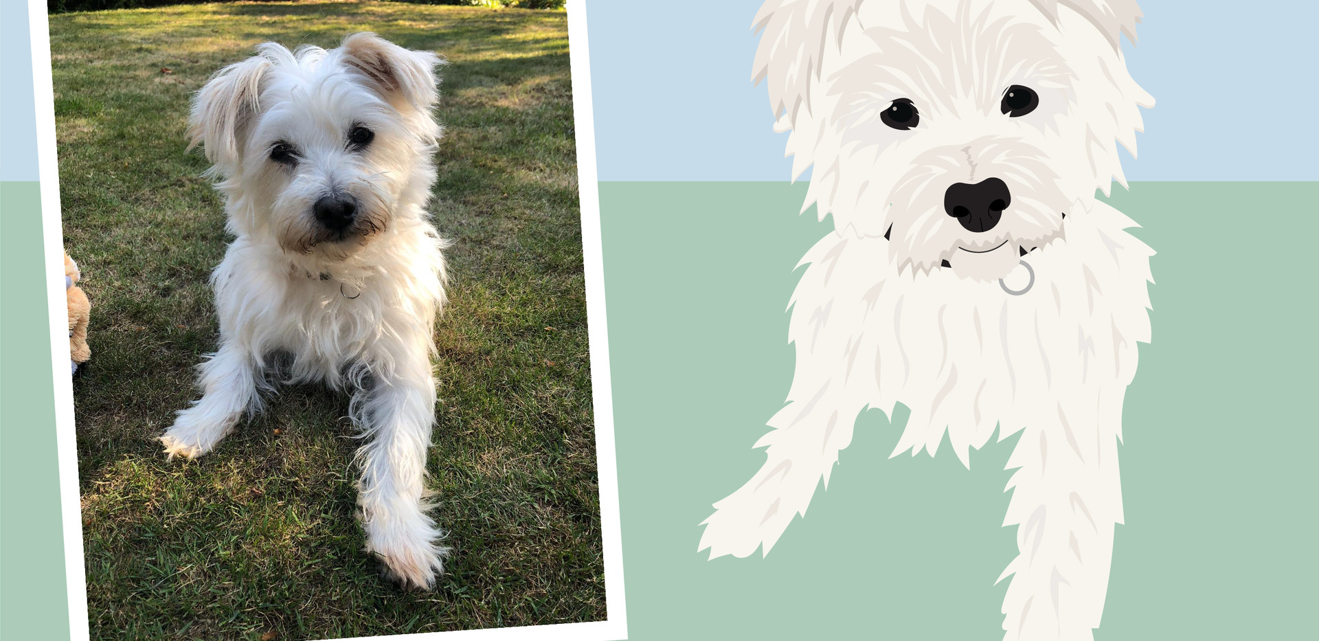 Pet portrait wix layout-03.jpg