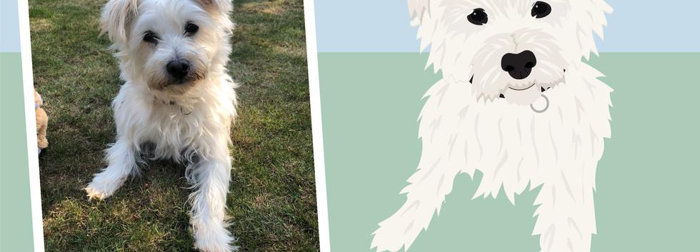 Pet portrait wix layout-03.jpg