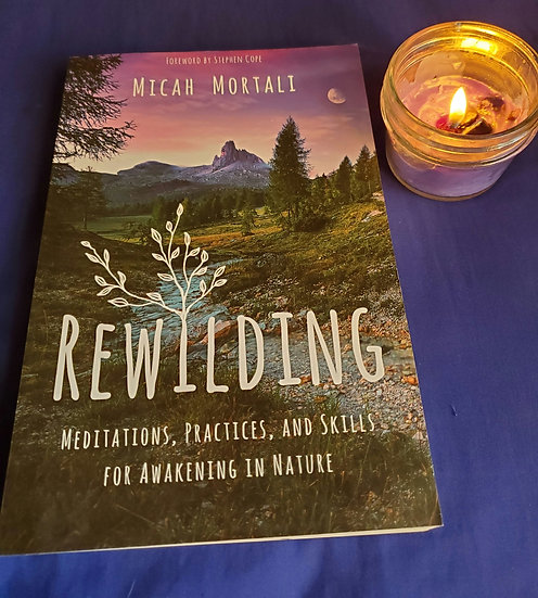 REWILDING! Meditations, practices and skills!
