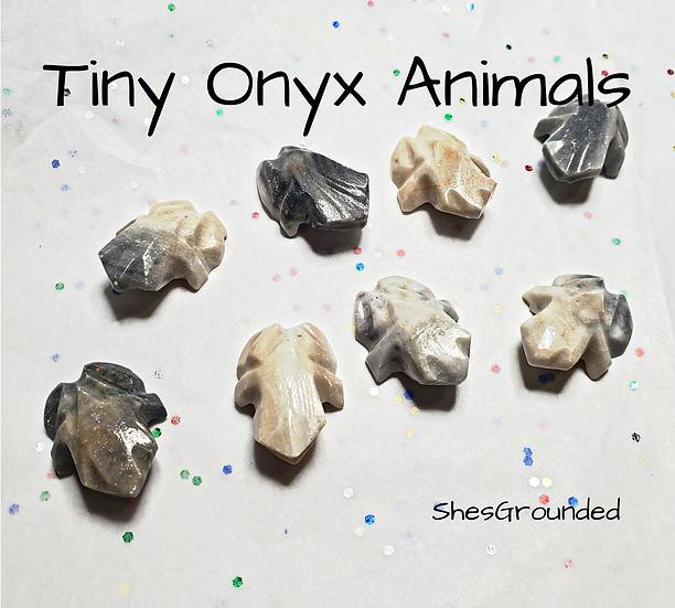1 pc Tiny Onyx Frog