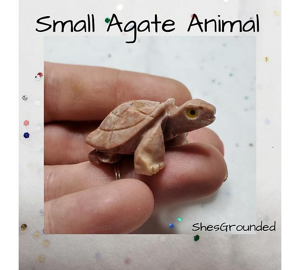 1 pc agate turtle