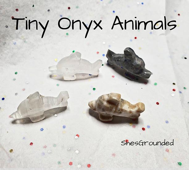 1 pc Tiny Onyx Dolphin