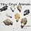 Thumbnail: 1 pc Tiny Onyx Turtle