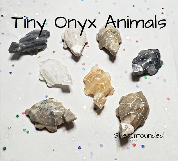 1 pc Tiny Onyx Turtle