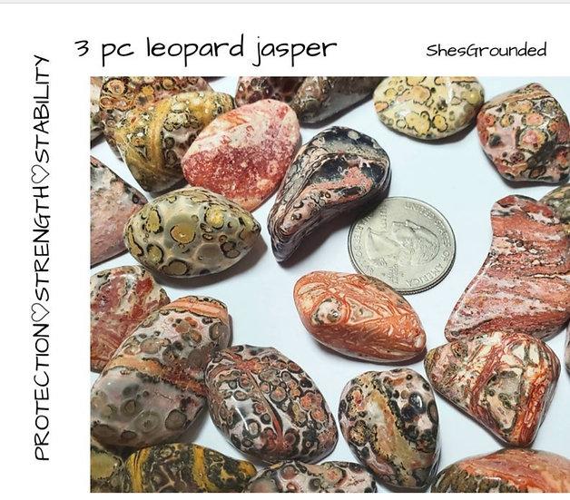 LEOPARD JASPER 3 PC SET