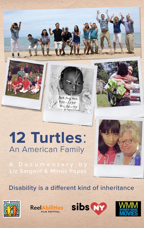 12 Turtles