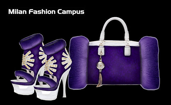 accessories bag shoes design