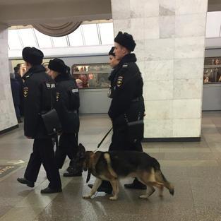 Russian Police.jpeg
