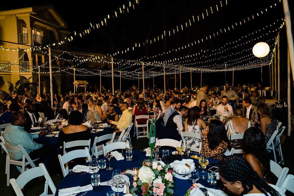 The Humane Society's Furball gala was held under the stars at the Westin.