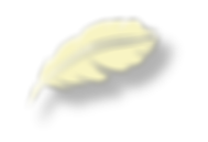 feather-38.png