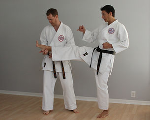 Karate private lessons, martial art