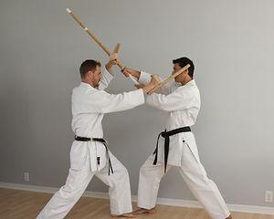 Karate Kobudo (weapons) martial arts