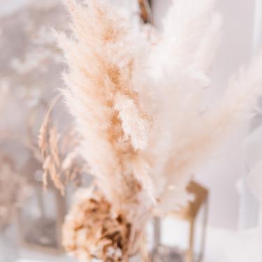 Laima Bridal Boutique-1265515.jpg