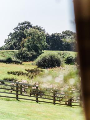 Outdoor at Sandhole Oak Barn, beautiful large green areas of the Sandhole Oak Barn