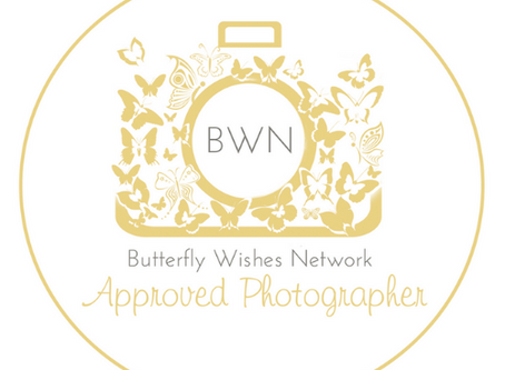 Charity: Butterfly Wishes Network