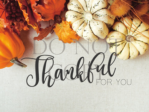Thankful For You Postcard