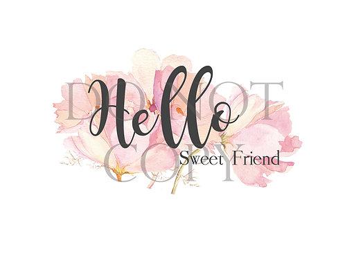 Hello Sweet Friend Postcard