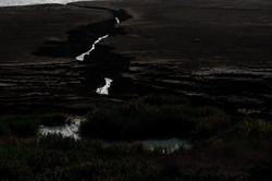 Black Earth 2012 אדמה שחורה