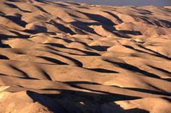 Judean Desert 2017 מדבר יהודה