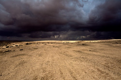 Tempest 2019 סערה