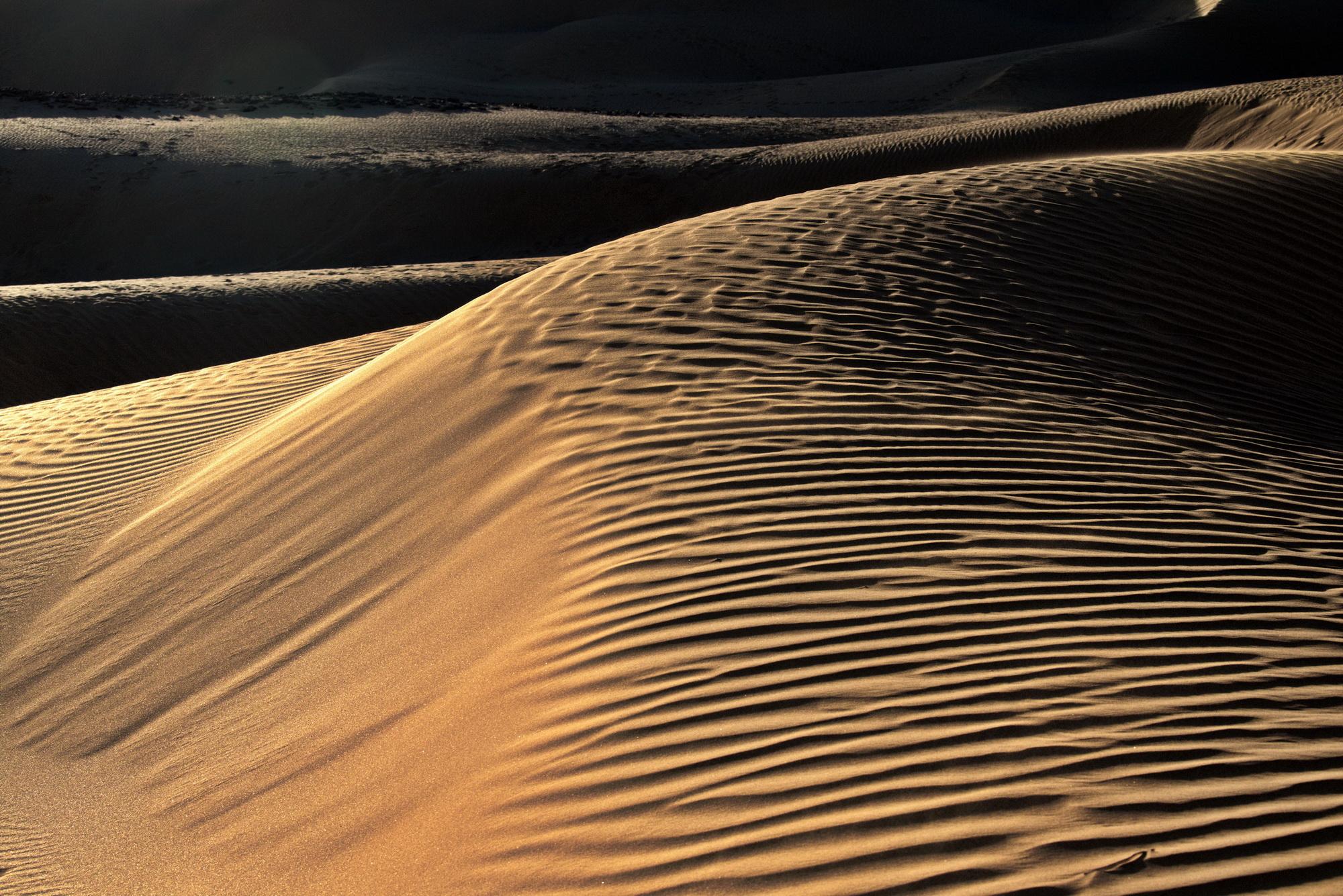 Embracing Dune 2019 הדיונה העוטפת