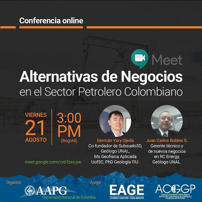 Alternativas de Negocio en el Sector Petrolero Colombiano