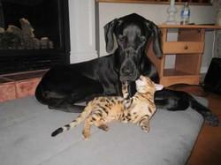 Kira et son amie