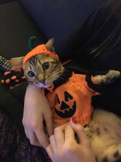 Maggy , Halloween