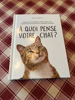 livre à quoi pense votre chat