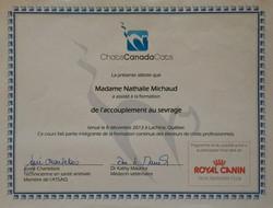 Certificat de Formation