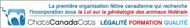 Logo Chats Canada Cats