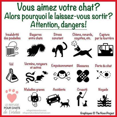 affiche danger pour chats
