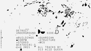 REVIEW: BUILDINGS - 313 Acid Queen x SickBoy [Detroit Underground]