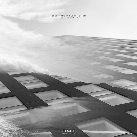 Electrons in Slow Motion - Meta Incognita [D.M.T. Records]