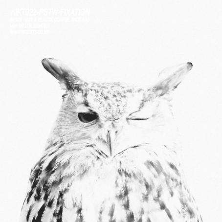 PSTW presents Fixation [Rejekt Music]