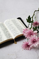 Ministry_Hokkien Bible study.jpg