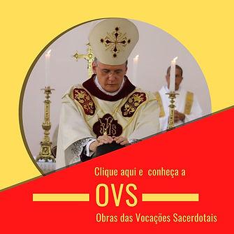OVS card aba