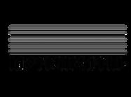 logo instrumental 2021.png
