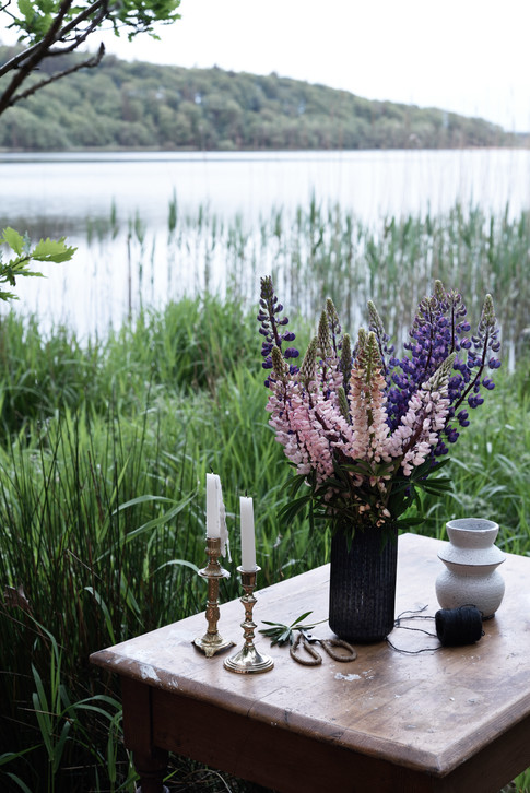Lupins by the lake